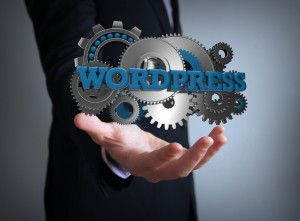 A man holding gears with the words WordPress over them
